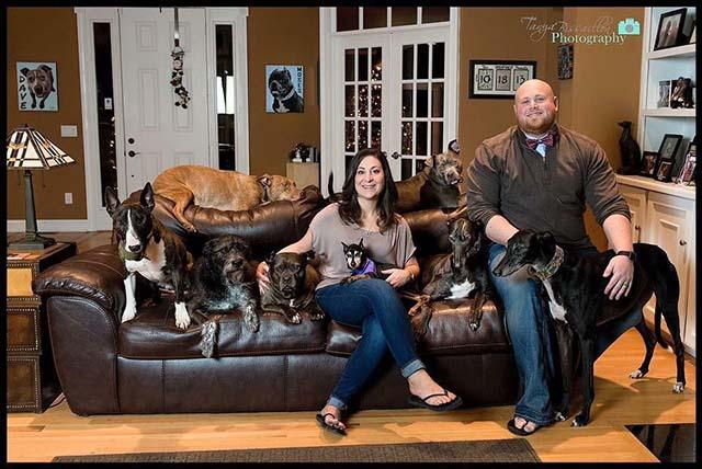 Pareja adoptó a tantos perros