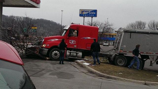 Perro condujo un camión