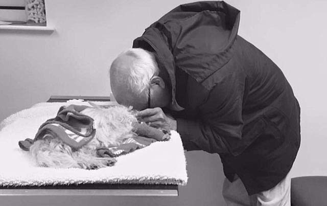 Hombre llora la muerte de su perra
