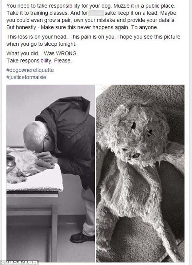 Publicación de hombre llorando a su perro