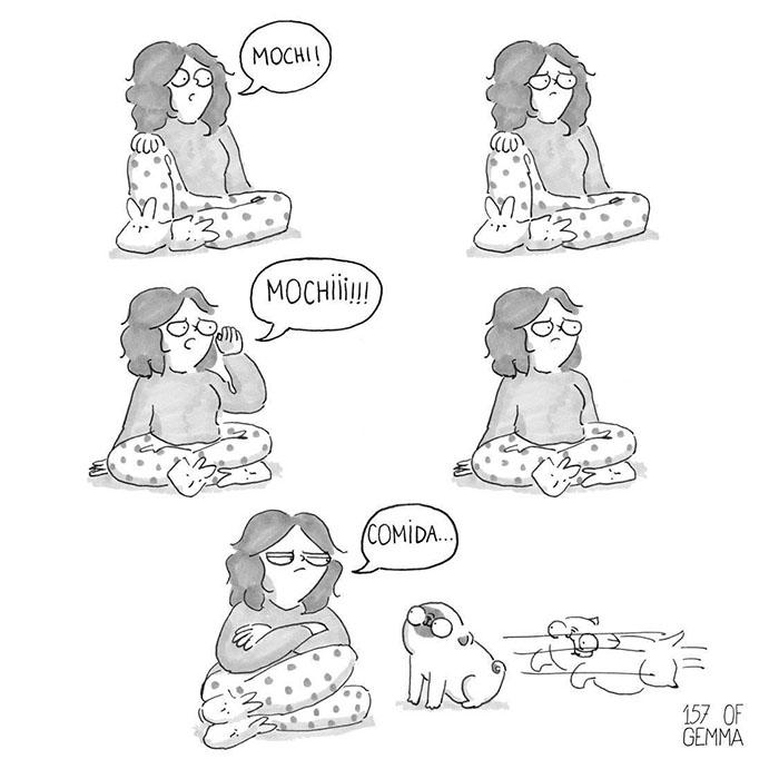 Perro piensa en comida