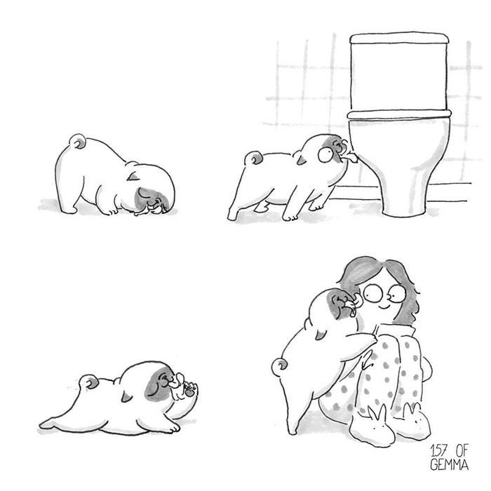 perro lamiendo