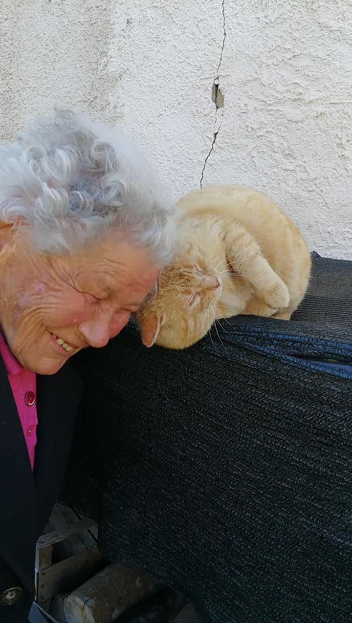 anciana encuentra a su gato desaparecido luego de años