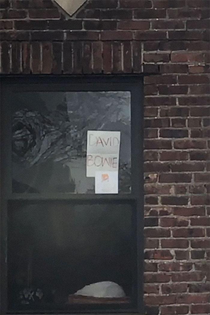 graciosos letreros cuelgan en las ventanas de las personas