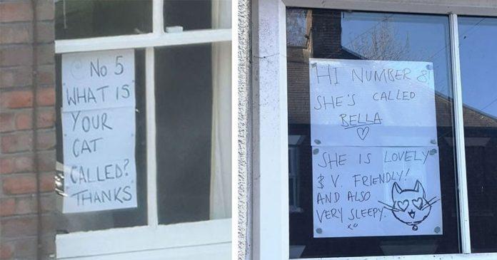 Personas conocen a las mascotas de sus vecinos por letreros en sus ventanas