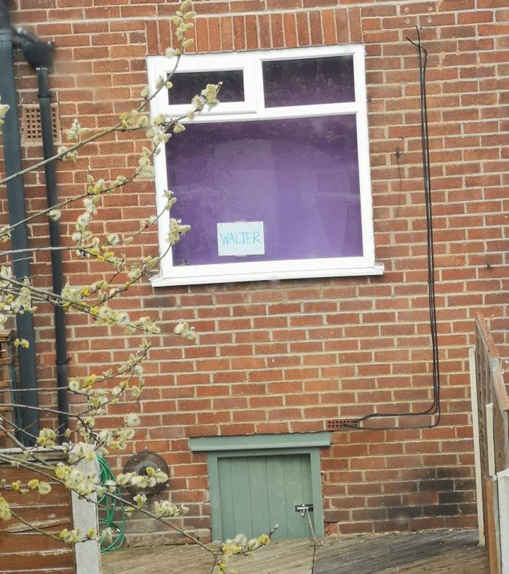 vecinos se comunican por carteles para hablar de sus gatos