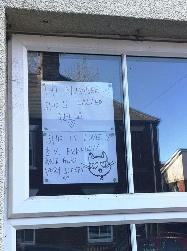 vecinos tienen conversaciones por medio de letreros en sus ventanas
