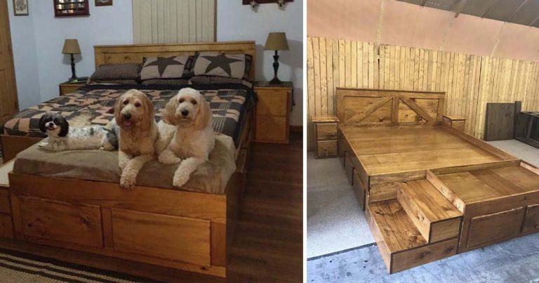 Empresa fabrica marcos de cama personalizados con camas para mascotas incorporadas