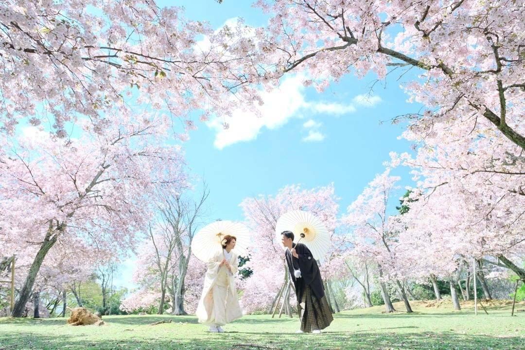 Sesión fotos Parque Nara Japon