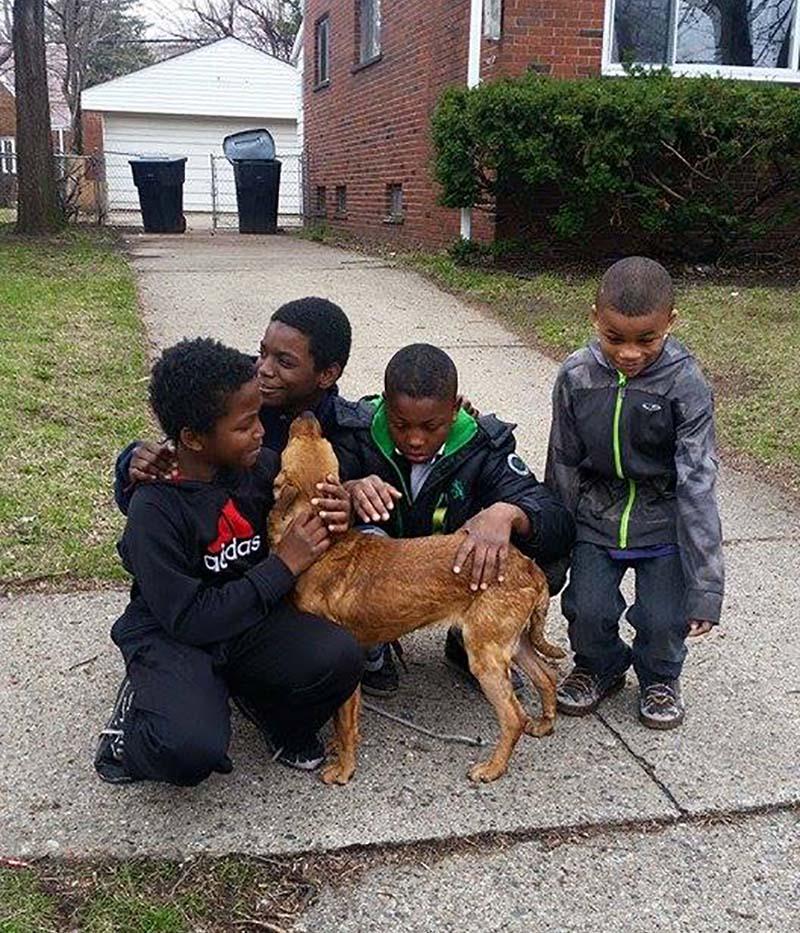 Cuatro niños heroicos perrita
