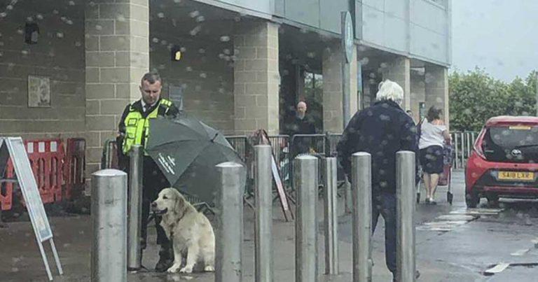 Guardia de seguridad es elogiado por proteger a un perro con un paraguas bajo la lluvia