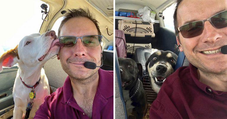 Este hombre compró un avión para poder salvar a cientos de animales