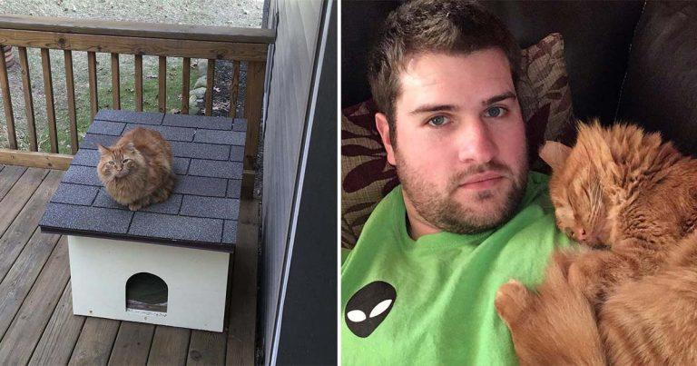 Hombre pasa un año haciendo amistad con un gato sin hogar para ganarse su confianza