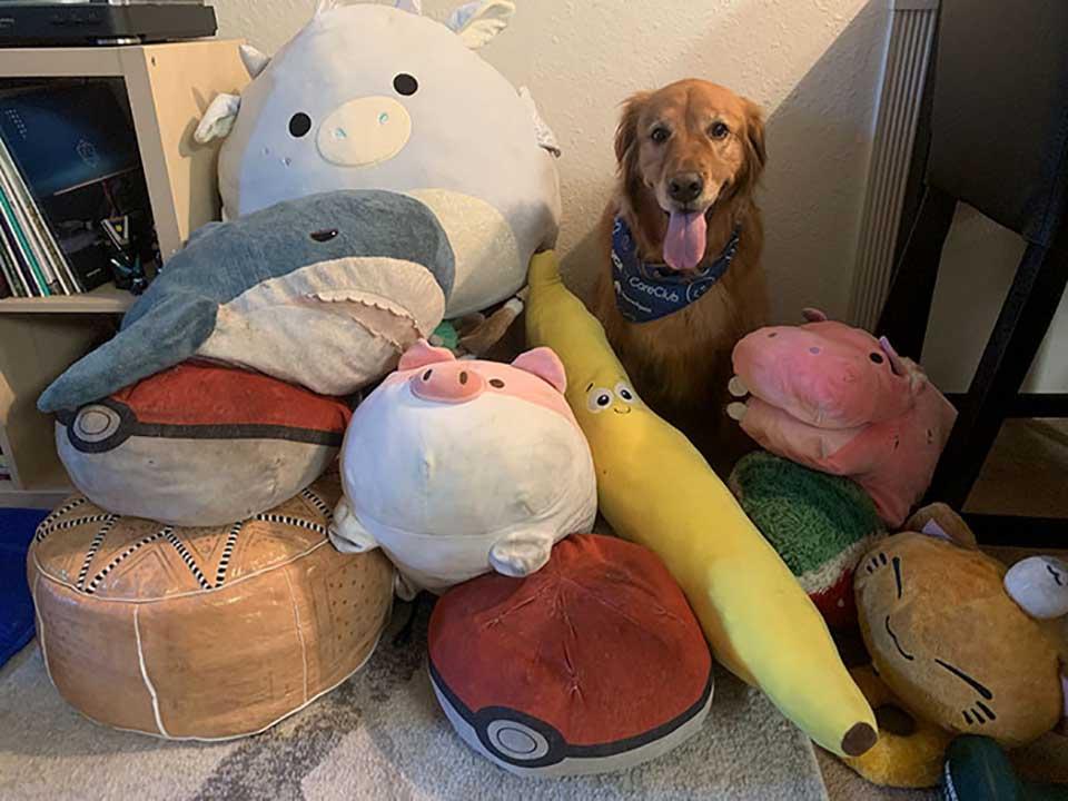 Muchos juguetes