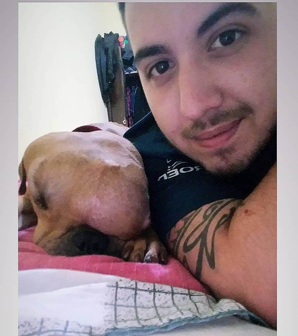 Perro con tumor Luciano