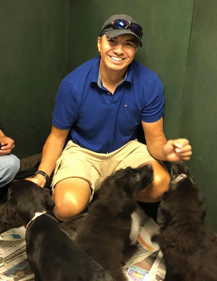 Visitando perritos