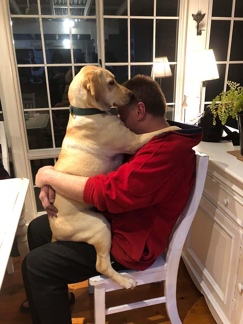Papá no quería mascota