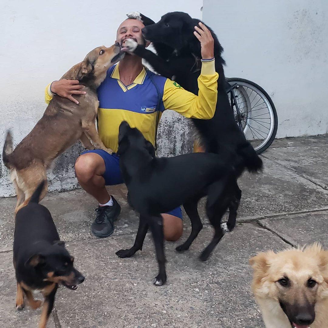Perros felices abrazando a hombre