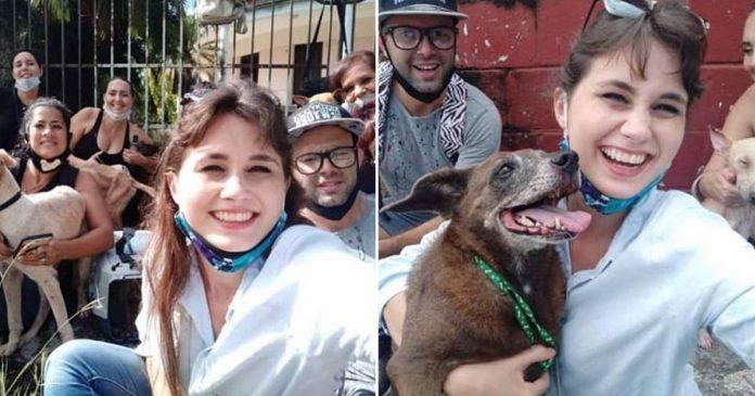 Activistas rescatan todos los perros de Zoonosis