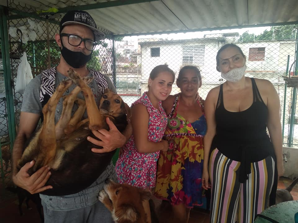 Animalitos rescatados