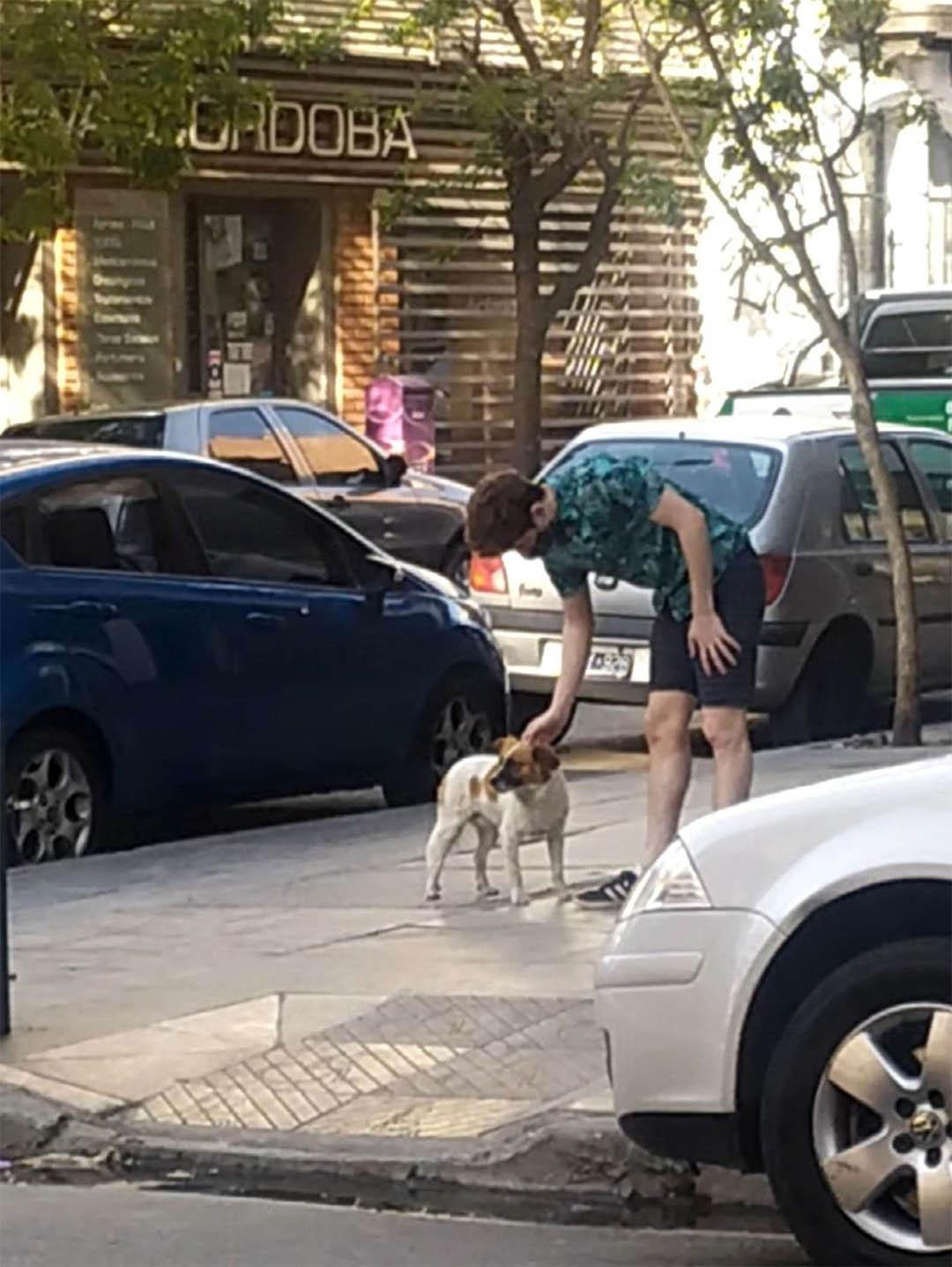 Perro llevó rescatistas