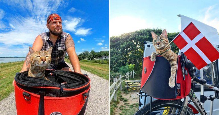 Hombre decide recorrer el mundo en bicicleta y encuentra una gatita que lo acompaña