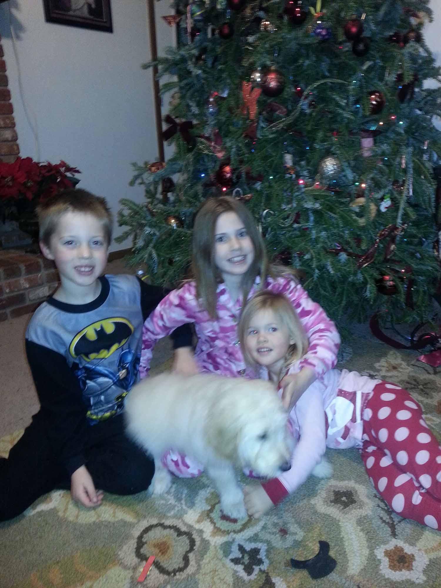 Niños junto a su perro en navidad