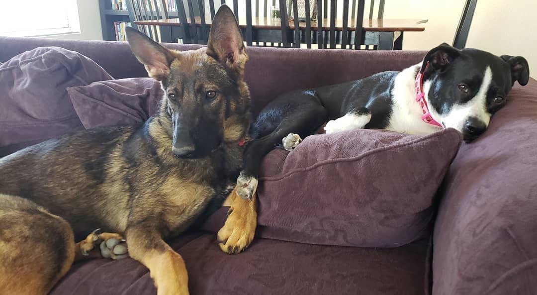 Ruby y hermana