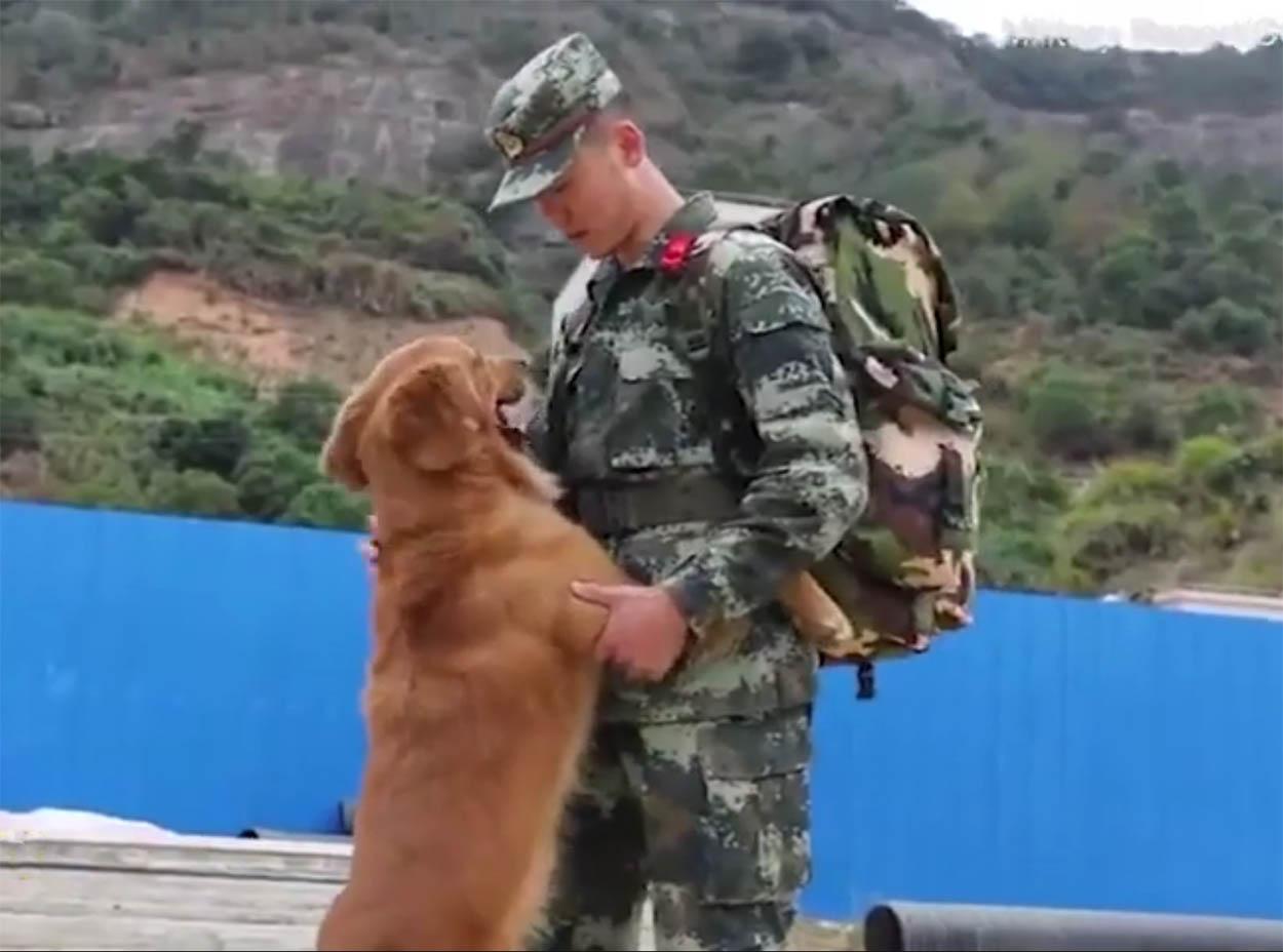 Entrenador se despide de su perro militar