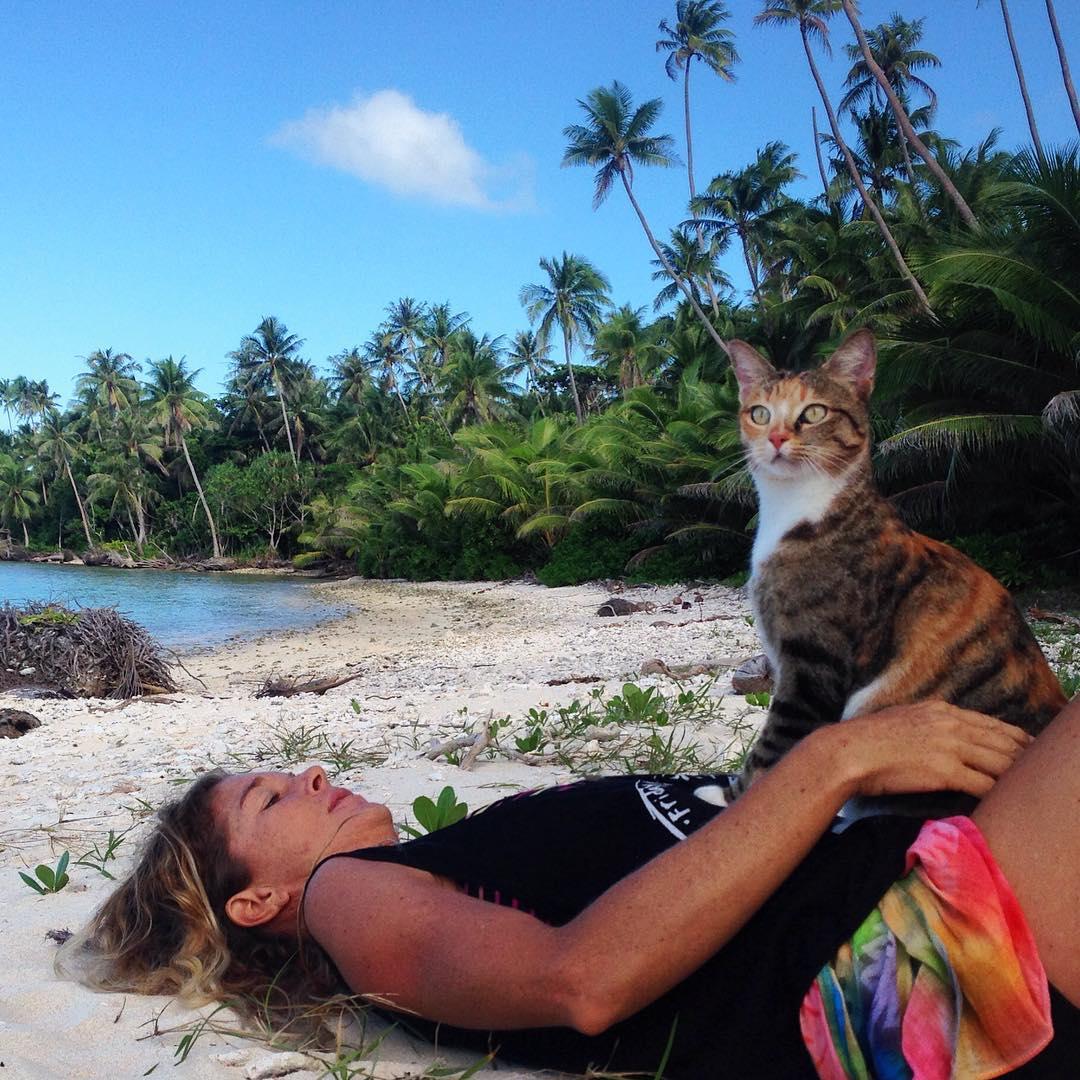Adorable gato junto a su humana