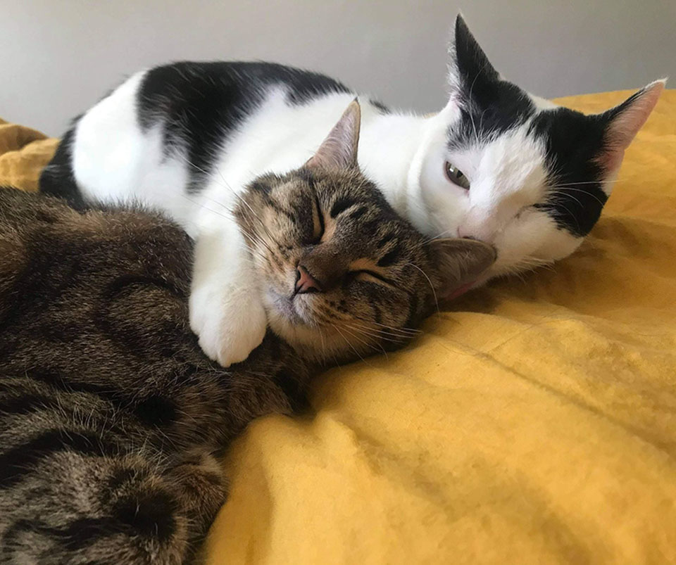 Flora y Reuben abrazados