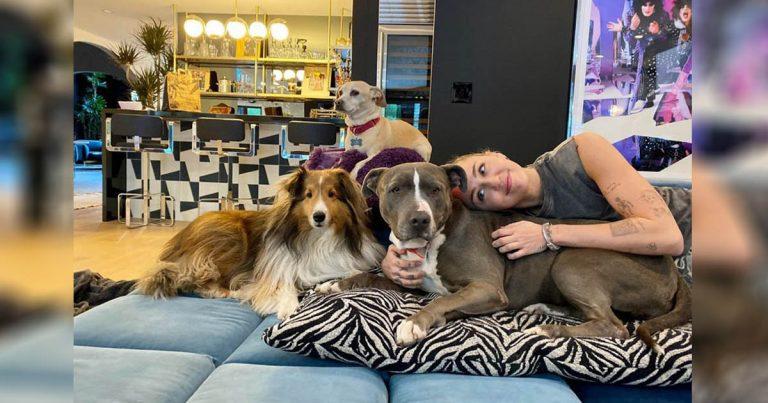 Miley Cyrus llora de felicidad al presentar a su nueva perrita rescatada
