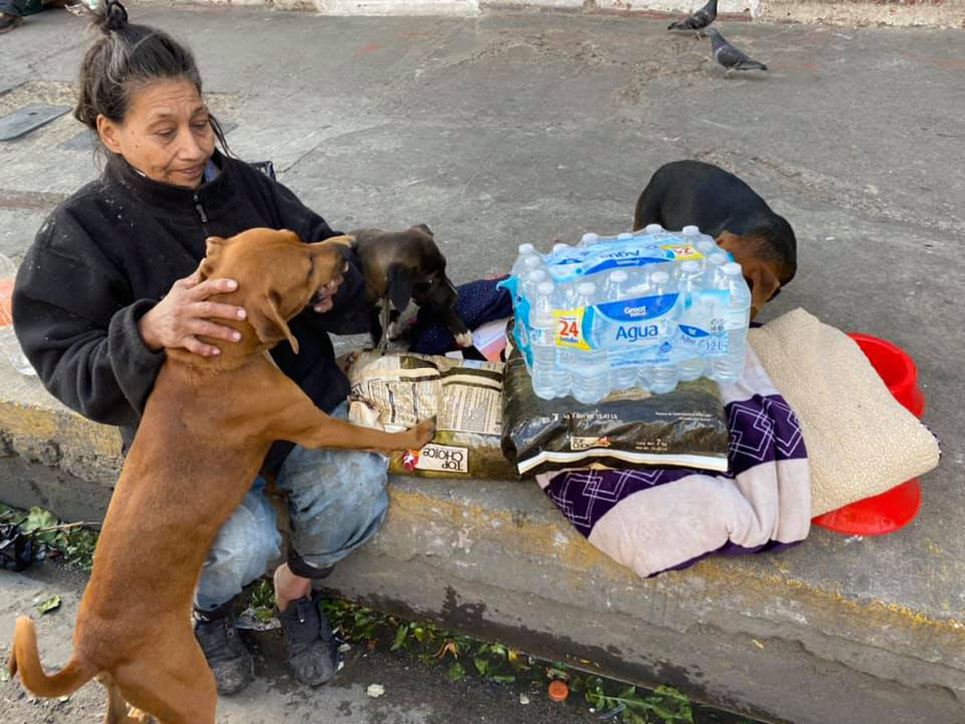 Mujer sin hogar y sus mascotas