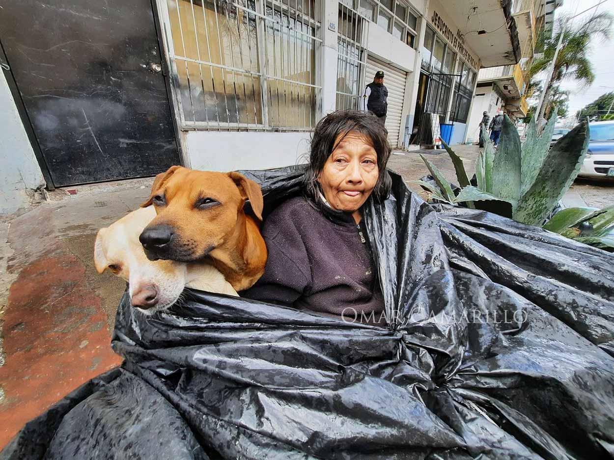 Mujer sin hogar y sus perros
