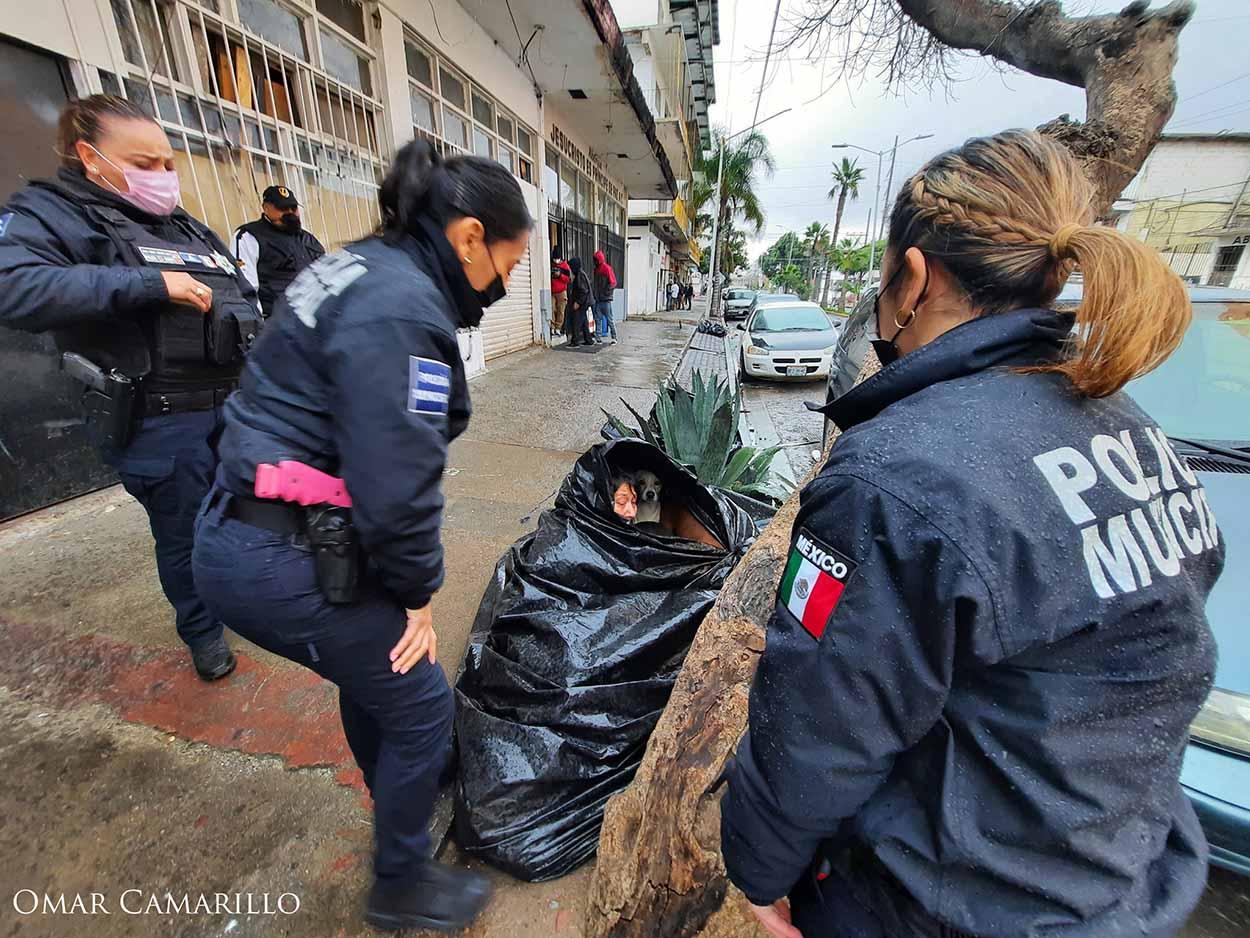 Policía ayuda a mujer y sus perros