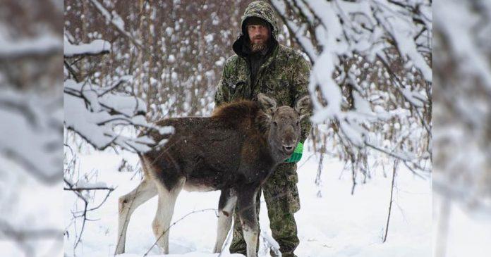 Ex soldado de las fuerzas especiales de Rusia está dedicado a salvar animales