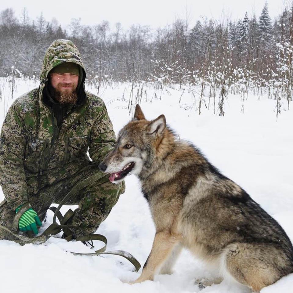 Ex soldado rescata animales