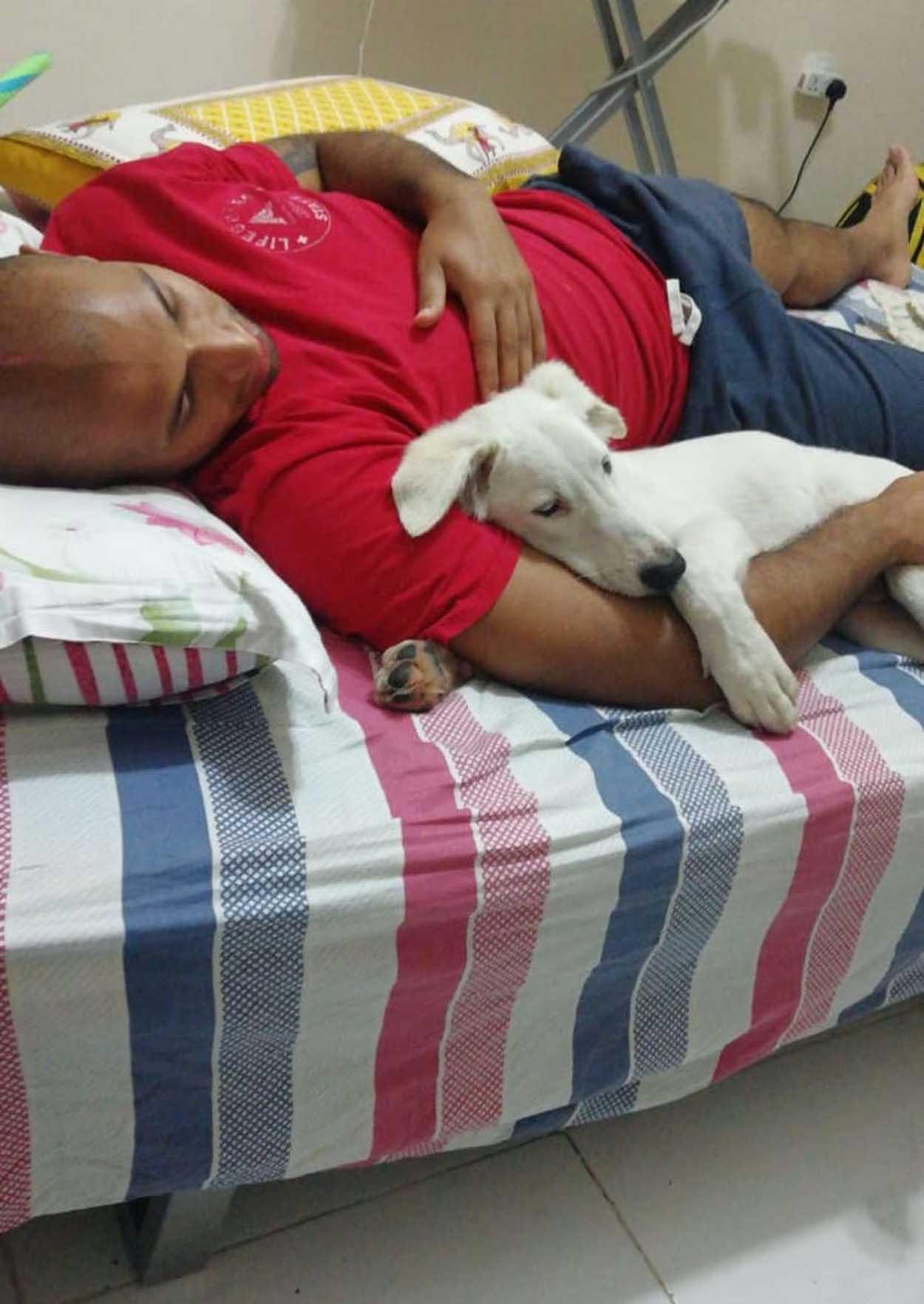 Dog falls asleep on his father