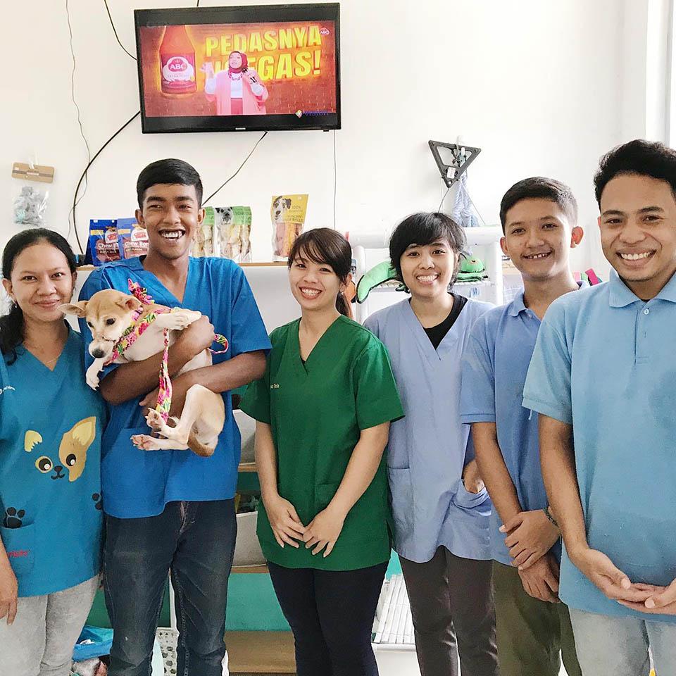 Equipo veterinario