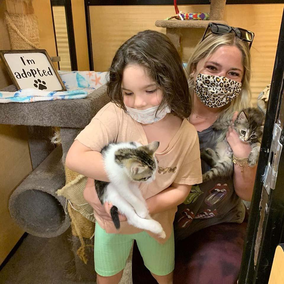 Gatito y su amigo son adoptados