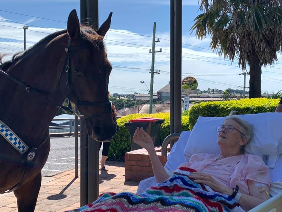 Mujer que ama a los caballos recibe sorpresa