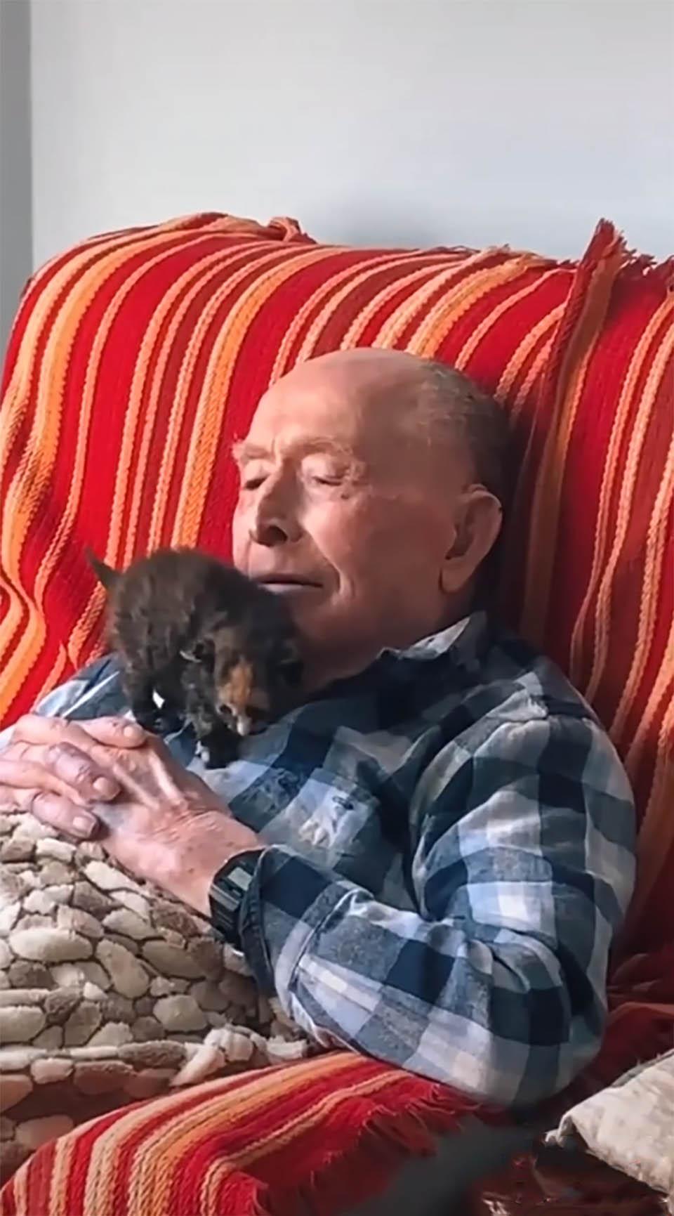 Abuelo de 100 años hace amistad con pequeño gatito