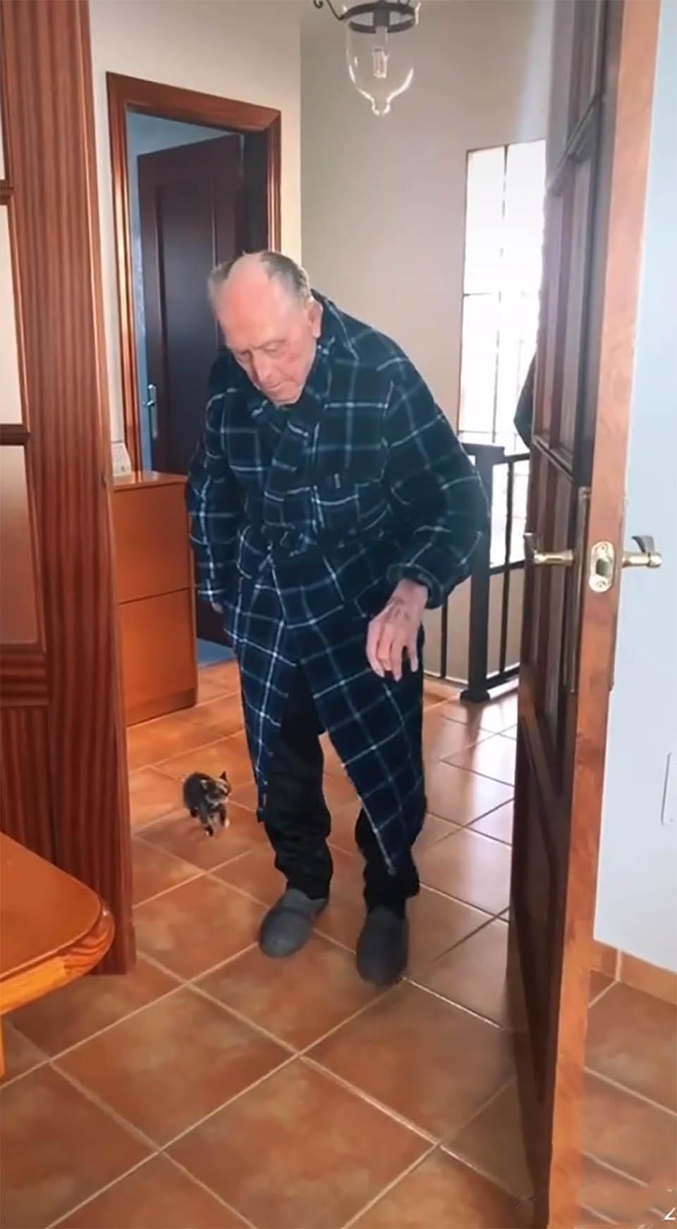 Abuelo y pequeño gatito