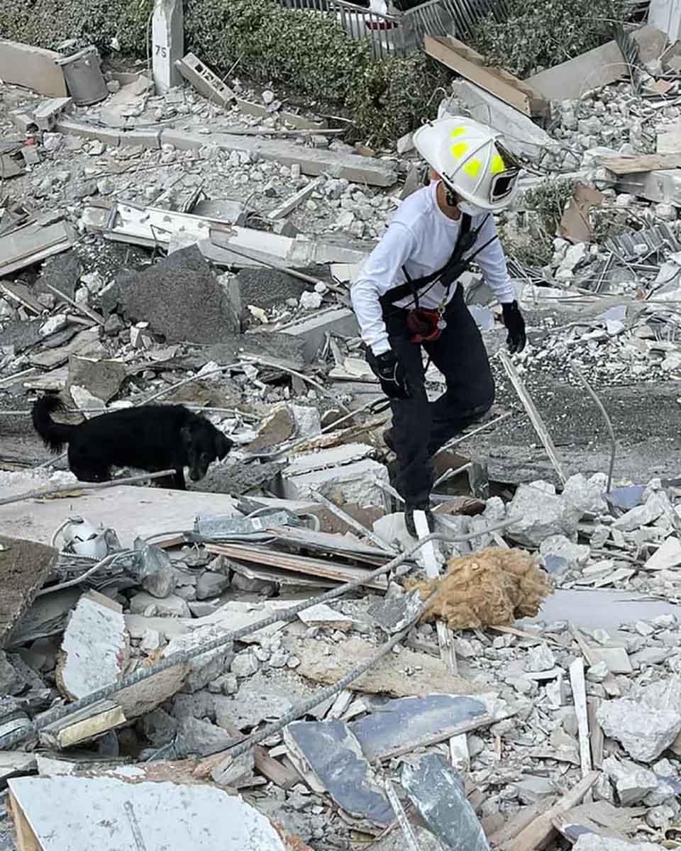 Bombera y su perro caminan en busca de sobrevivientes