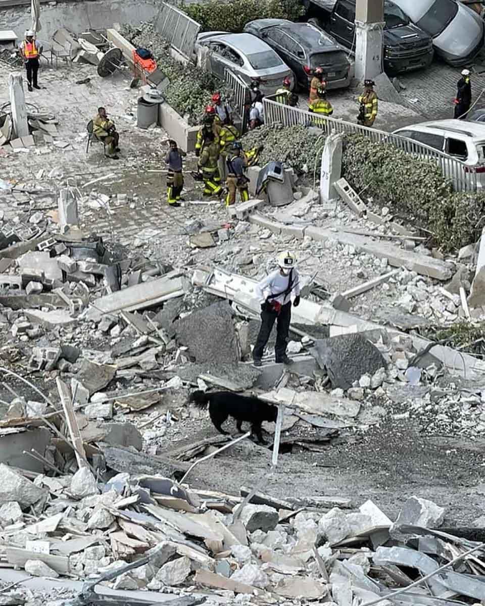 Bombera y su perro caminan entre los restos de un condominio