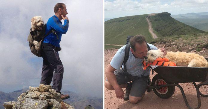 Hombre lleva perro último paseo montaña