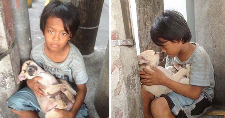 Niño abandonado encuentra consuelo y amistad en un perro que lo protege