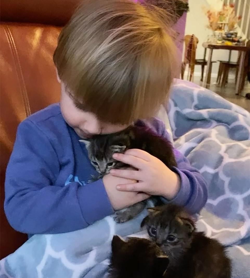 Ash y gatitos