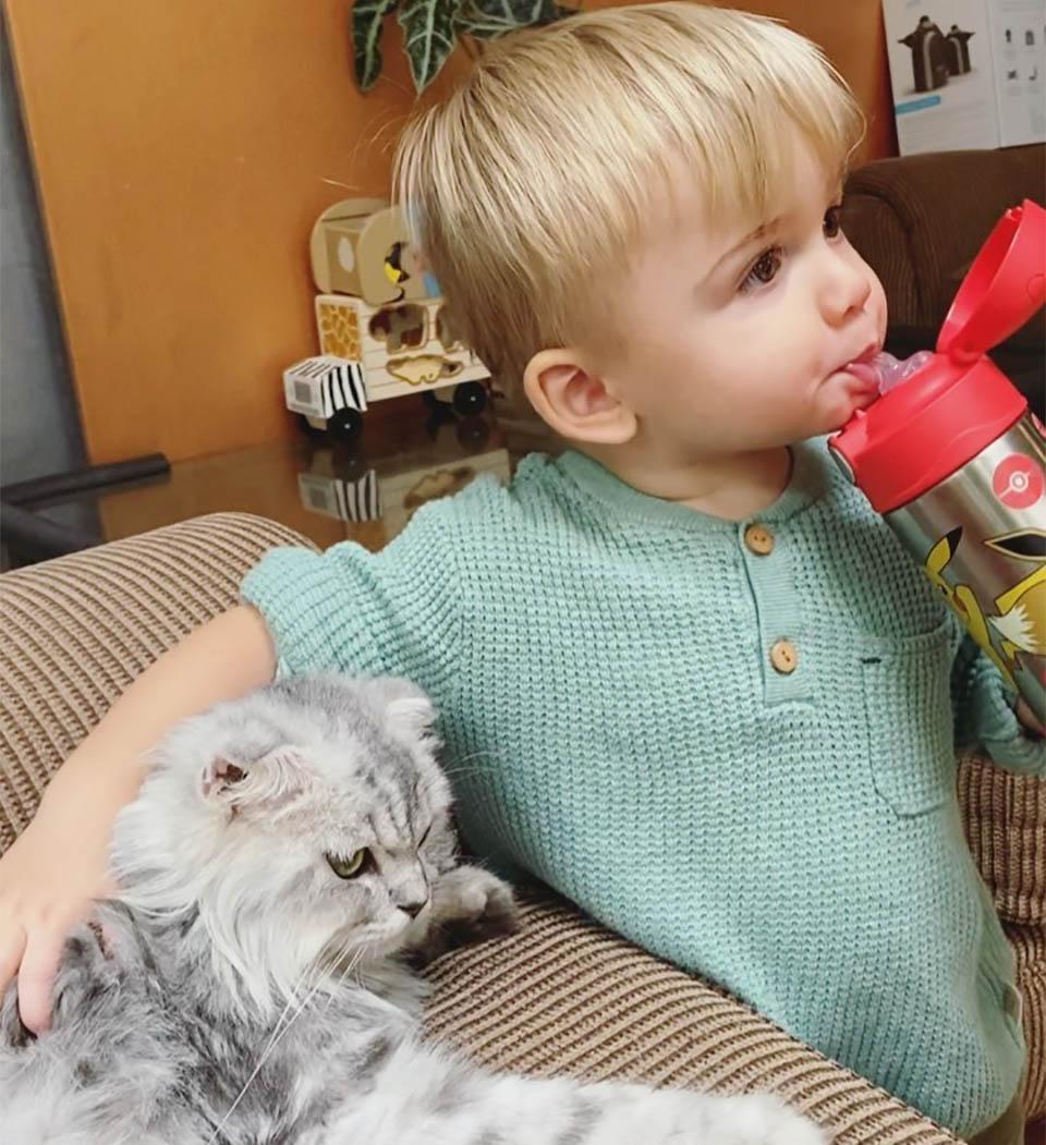 Ash y gato