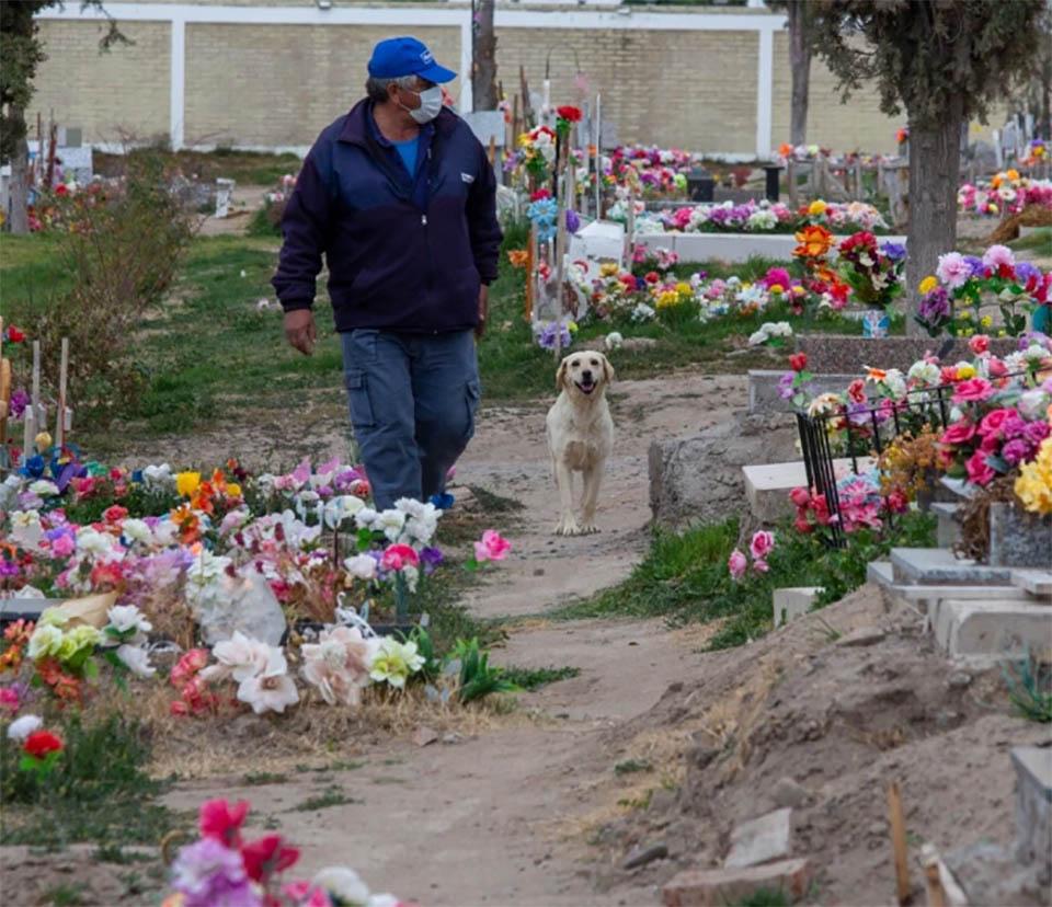 Bobby recorriendo cementerio